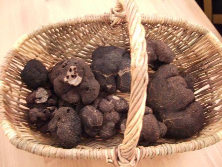 Le bonheur du caveur la d couverte de la truffe noire ou truffe du p rigord truffes perigord - Comment cuisiner les truffes noires ...